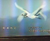 """【BGM】Kala<br />  fina""""symphonia<br />  """""""