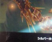 【AC】ダライアスバーストアナザークロニクル ZONE  K <br />  ダークヘリオス撃破♪-<br />  オリジナルモードクリア-