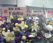 【LIVE】高垣彩陽ファーストコンサート『Memoria<br />  ×Melodia<br />  』AT 東京国際フォーラム
