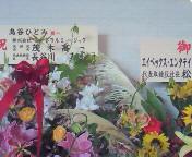 【LIVE】島谷ひとみ Premium meets Premium 2<br />  012 AT 浜離宮朝日ホール