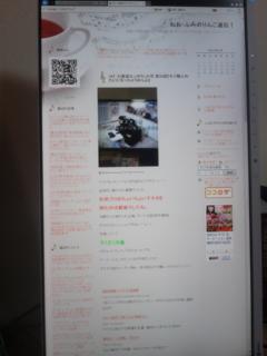 [EIZO]縦STG<br />  用 Flex ScanEV2450